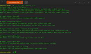 Captura de pantalla deepin terminal 20210617183914