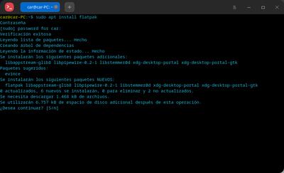 Captura de pantalla deepin terminal 20210128091641